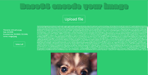 Screen of base64 encode project